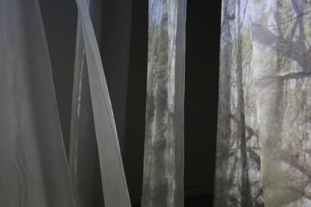 Elisabeth Schneider, artiste accueillie en résidence en 2014, Pollen